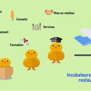 Les incubateurs dédiés à la restauration